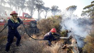 Up against the same bushfire near Cape Town, firefighters spray embers to prevent a flare up.