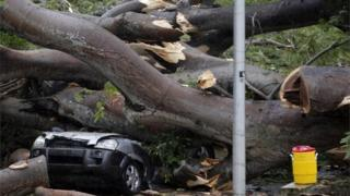 A car crushed by a tree which killed a young boy in Panama in Tropical Storm Otto, 22 November 2016