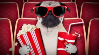 Perro en el cine