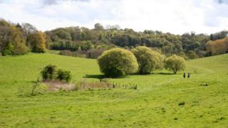 Witcombe Valley, south Somerset