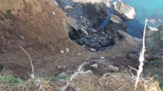 Sheep stranded at Mathry, Pembrokeshire