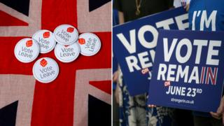 Vote Leave badges and Vote Remain placards