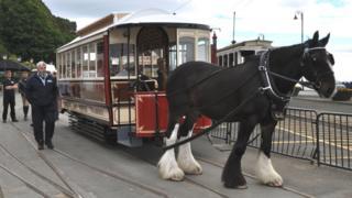 Horse tram at Strathallan terminal