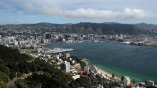 A view of Wellington from a high vantage point