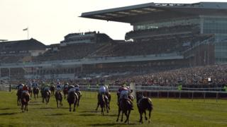 Grand National horses at Aintree with Lord Daresbury and Princess Royal stands in background
