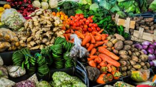 Vegetables for market for South America