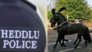 A police jacket and a funeral horse