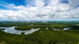 Amazônia, em foto de 2017