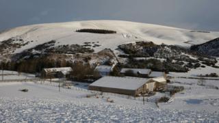 Lauder Snow