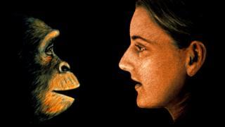 Ilustración de un chimpancé frente a una mujer