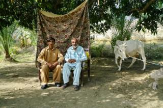 Muhammad, 46 (right), pictured with his ox.