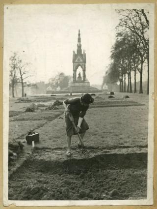 Isabel Beech digging an allotment in Kensington Gardens