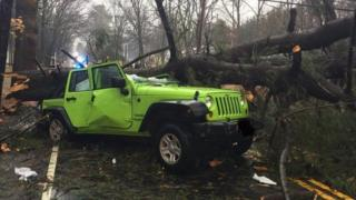 Police say this Massachusetts driver suffered minor injuries after a tree fell on him