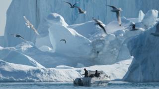 Por qué la remota Groenlandia es atractiva para Trump (y también para China) - BBC News Mundo