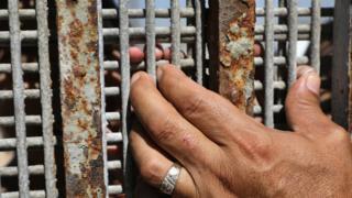 Dos familiares se tocan los dedos a través de la valla que separa Tijuana de Estados Unidos