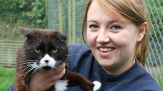 Ferne Animal Sanctuary staff with a cat patient