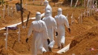 Les deux anticorps en question ont protégé des souris qui avaient été exposés à des doses mortelles des trois principales souches d'Ebola.