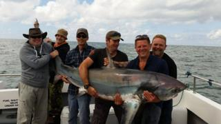 The fishermen with the thresher shark