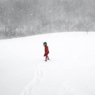 A young girl in a red coat in the snow
