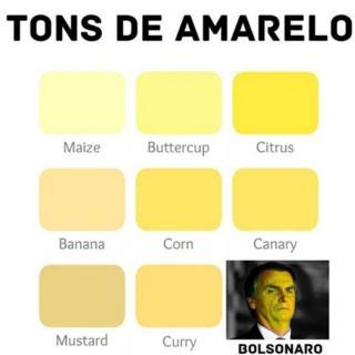 Montagem mostra Bolsonaro amarelo