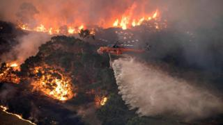 A helicopter drops water on a bushfire
