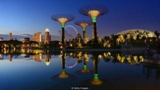 """Những """"siêu cây"""" của Singapore tại 'Gardens by the Bay'. Những thứ như chi phí rất cao cho việc sở hữu xe hơi thường đẩy nó lên đầu bảng danh sách """"thành phố đắt đỏ"""""""