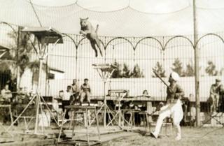 Damoo Dhotre performing at a circus