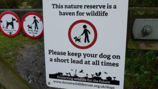 A sign telling dog walkers to put dogs on leads