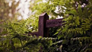 North Downs marker at Farnham