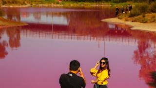 roze jezero