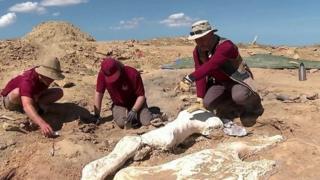 عظام ضخمة لديناصورات بموقع أمريكي سري