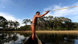 Hunter uses traditional bow and arrow in Amazon