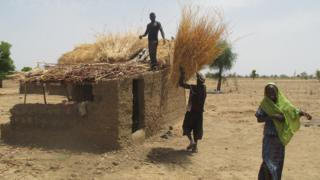 Dans des reportages publiés en 2015 par ces médias, des villageois camerounais accusent l'entreprise d'avoir accaparé leurs terres.