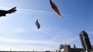 Fish thrown into the Thames by Parliament