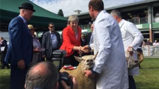 Theresa May at Royal Welsh Show