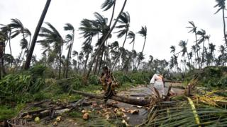 Indian women next to fallen palm trees after heavy winds brought by Cyclone Titli struck the area in Barua village in Srikakulam district of Andhra Pradesh on October 11, 2018