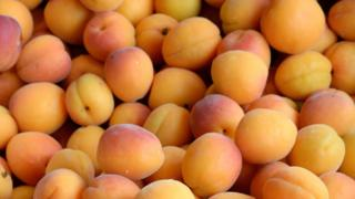 Apricots generic