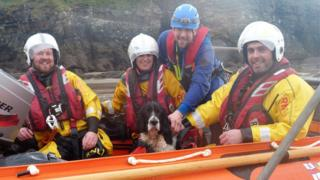 RNLI crew with rescued dog