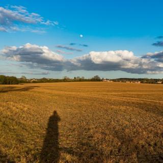 Shadow in a field