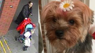 CCTV image of a woman wheeling away a dog in a buggy