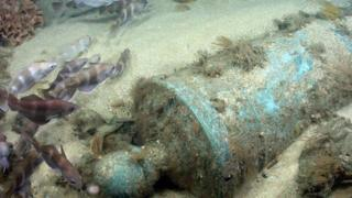 Bronze cannon in situ in Area D, wreck of the First Rate warship HMS Victory.