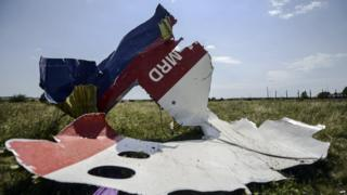 A picture shows a piece of debris of the fuselage at the crash site of the Malaysia Airlines Flight MH17 on July 25, 2014.