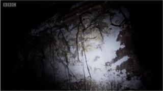 মসুলে নবী ইউনুসের মাজারের নীচে প্রাচীন প্রত্নতত্ত্ব