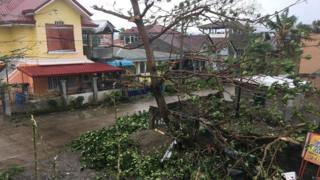 Branches ripped from trees in Tuguegarao
