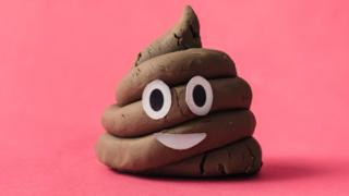 A-fake-poo-with-a-smiley-face.