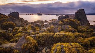 Rocks at Elgol shore in Skye