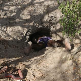 Zigwadzee mostra sua aptidão em pegar um porco-espinho