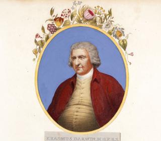 """Retrato de Erasmus Darwin """"autor de los amores de las plantas"""" publicado entre 1799-1807 (1810) por Dr Thornton, London"""