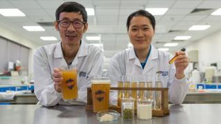 O professor Liu Shao Quan e a pesquisadora Chan Meu Zhi Alcine