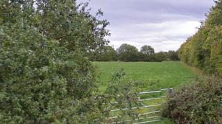 Field in Sibford Road, Hook Norton